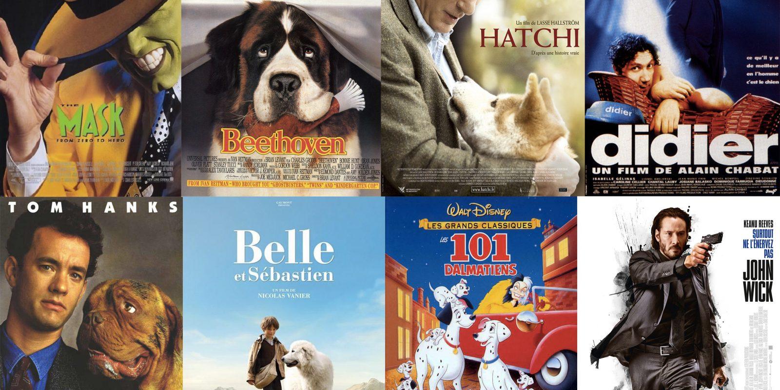 blog-films-chien